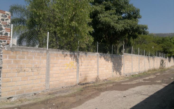 Foto de rancho en venta en  , tepetzingo, emiliano zapata, morelos, 1055031 No. 12