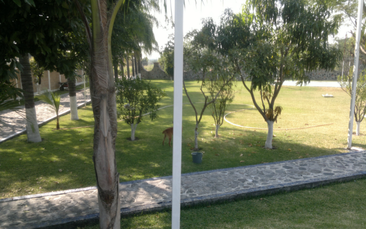 Foto de rancho en venta en  , tepetzingo, emiliano zapata, morelos, 1055031 No. 19