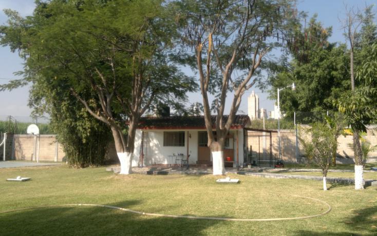 Foto de rancho en venta en  , tepetzingo, emiliano zapata, morelos, 1055031 No. 22