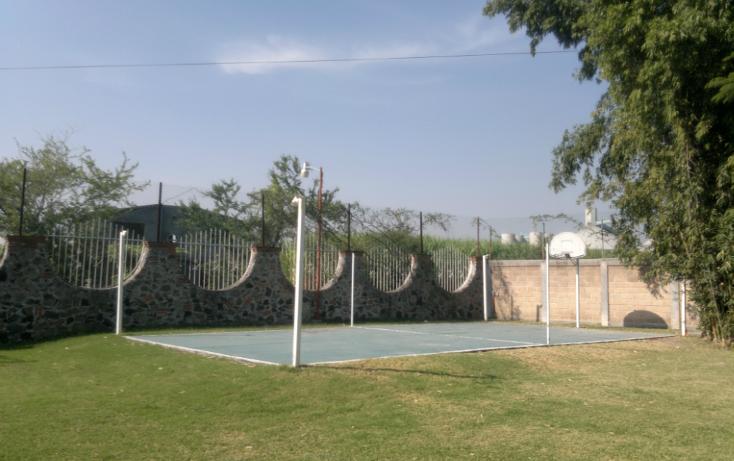 Foto de rancho en venta en  , tepetzingo, emiliano zapata, morelos, 1055031 No. 25
