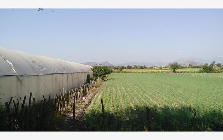 Foto de terreno habitacional en venta en  , tepetzingo, emiliano zapata, morelos, 1541202 No. 02