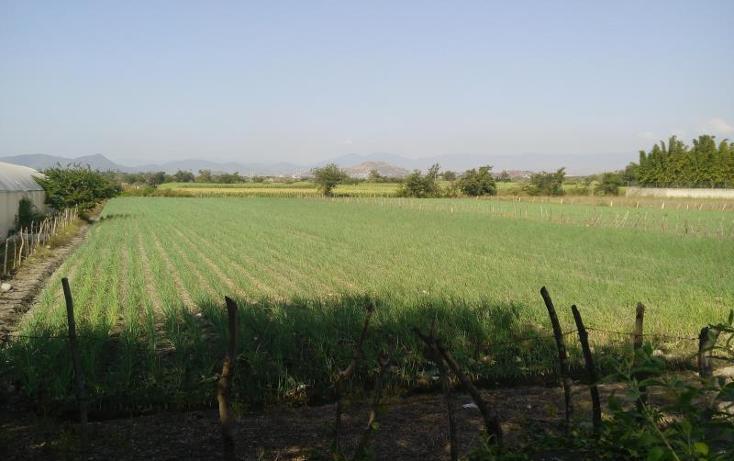 Foto de terreno habitacional en venta en  , tepetzingo, emiliano zapata, morelos, 1541202 No. 03