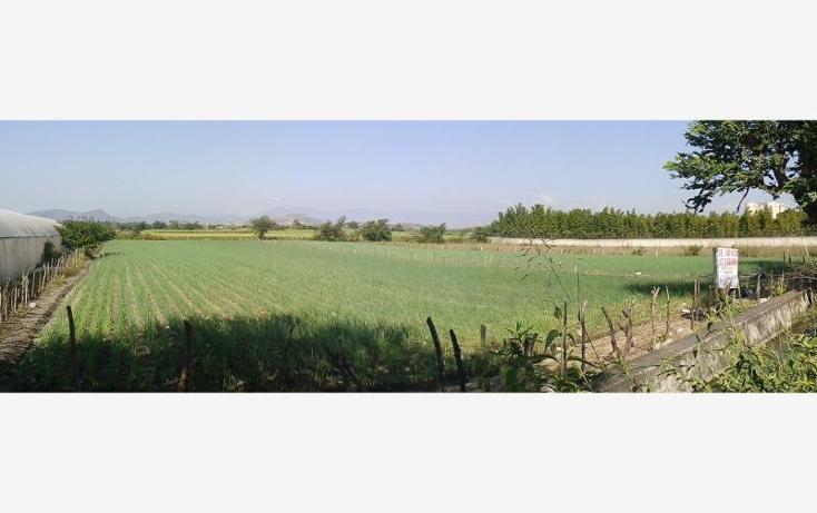 Foto de terreno habitacional en venta en  , tepetzingo, emiliano zapata, morelos, 1541202 No. 04