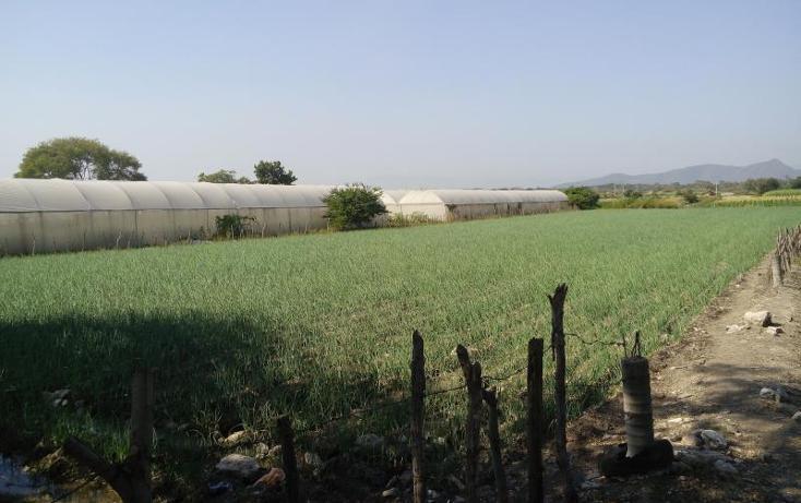 Foto de terreno habitacional en venta en  , tepetzingo, emiliano zapata, morelos, 1541202 No. 07