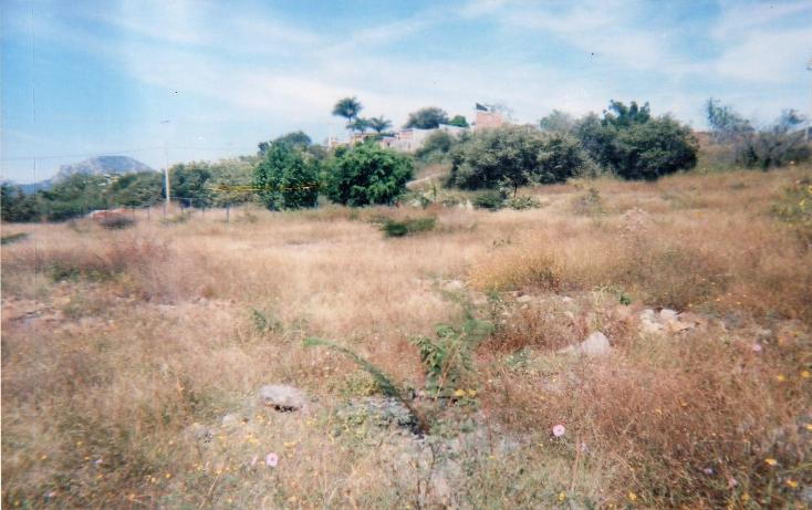 Foto de terreno habitacional en venta en  , tepexco, tepexco, puebla, 1879404 No. 04