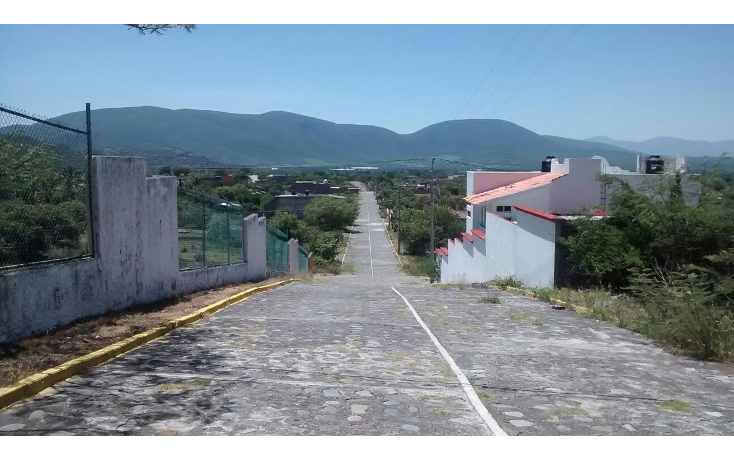 Foto de terreno habitacional en venta en  , tepexco, tepexco, puebla, 1879404 No. 09