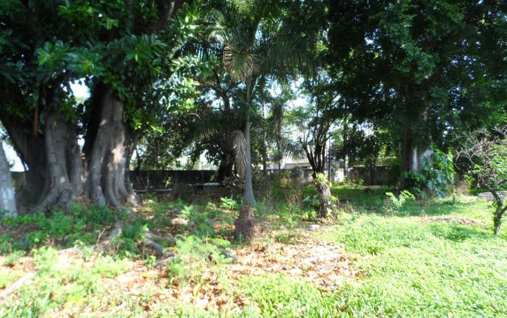 Foto de terreno habitacional en venta en  , tepeyac, cuautla, morelos, 623460 No. 12