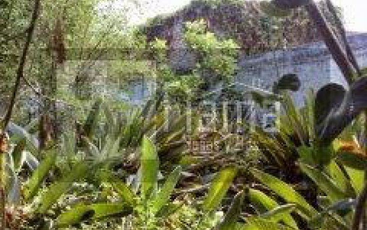 Foto de terreno habitacional en venta en, tepic centro, tepic, nayarit, 1040655 no 11