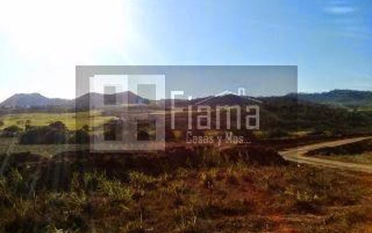 Foto de terreno habitacional en venta en  , tepic centro, tepic, nayarit, 1330855 No. 05