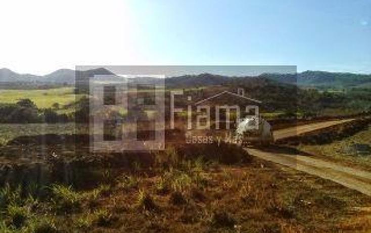 Foto de terreno habitacional en venta en  , tepic centro, tepic, nayarit, 1330855 No. 08