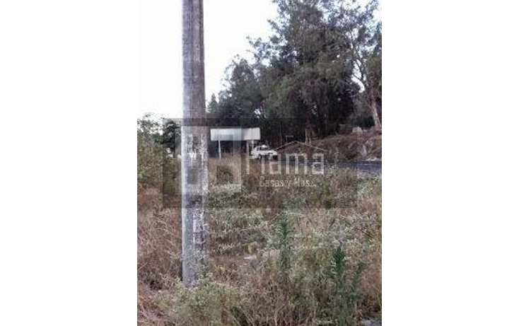 Foto de terreno habitacional en venta en  , tepic centro, tepic, nayarit, 1874040 No. 09