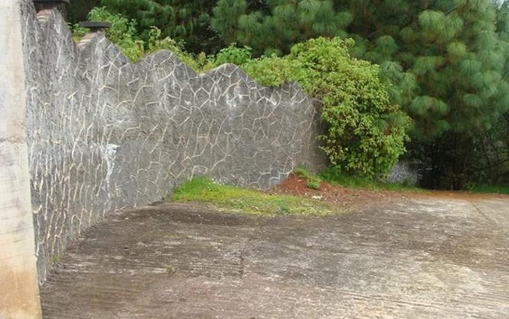Foto de rancho en venta en  , tepoxcuautla, zacatl?n, puebla, 1343713 No. 03