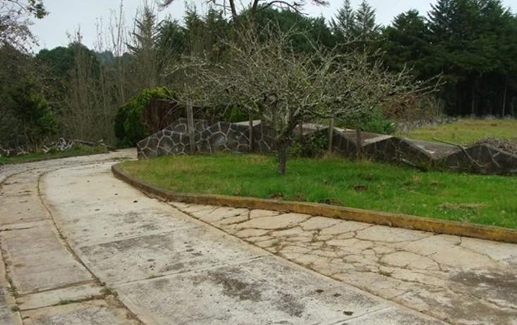 Foto de rancho en venta en  , tepoxcuautla, zacatl?n, puebla, 1343713 No. 10