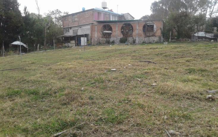 Foto de terreno habitacional en venta en  , tepoxtepec, tenancingo, m?xico, 1737014 No. 01