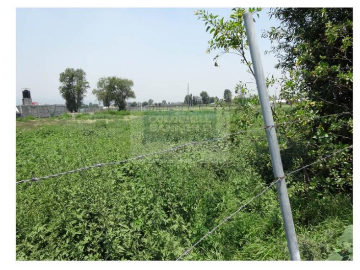 Foto de terreno habitacional en venta en  , san francisco tlaltenco, tláhuac, distrito federal, 1336899 No. 03