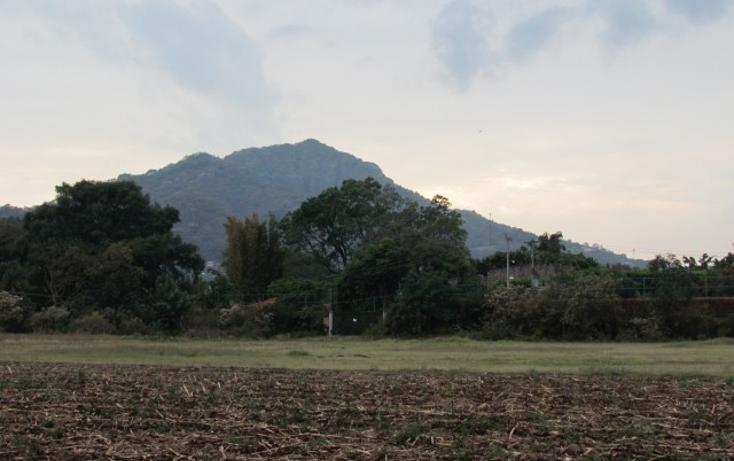 Foto de terreno habitacional en venta en  , tepoztlán centro, tepoztlán, morelos, 1142989 No. 01