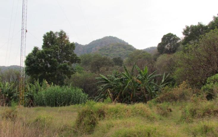 Foto de terreno habitacional en venta en  , tepoztlán centro, tepoztlán, morelos, 1142989 No. 02