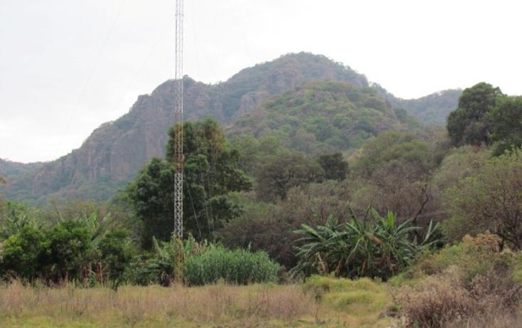Foto de terreno habitacional en venta en  , tepoztlán centro, tepoztlán, morelos, 1142989 No. 05