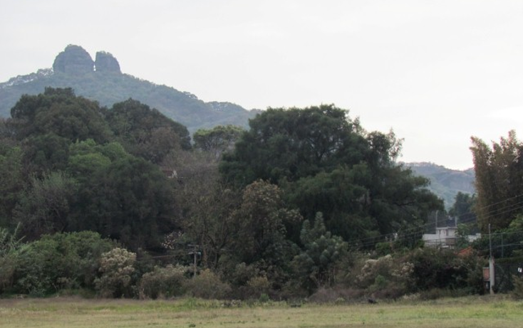 Foto de terreno habitacional en venta en  , tepoztl?n centro, tepoztl?n, morelos, 1142989 No. 06