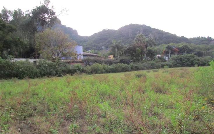 Foto de terreno habitacional en venta en  , tepoztlán centro, tepoztlán, morelos, 1192053 No. 12