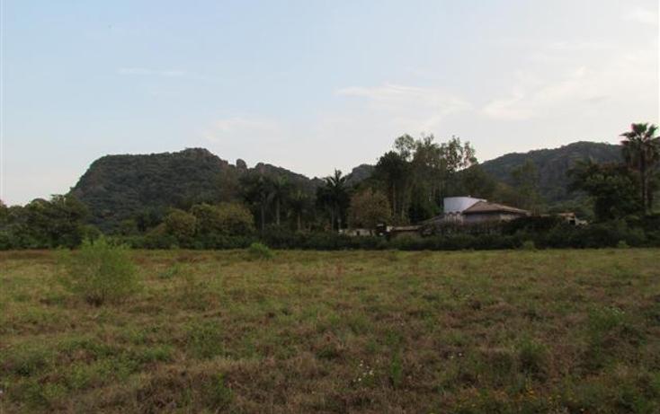 Foto de terreno habitacional en venta en  , tepoztlán centro, tepoztlán, morelos, 1192053 No. 22