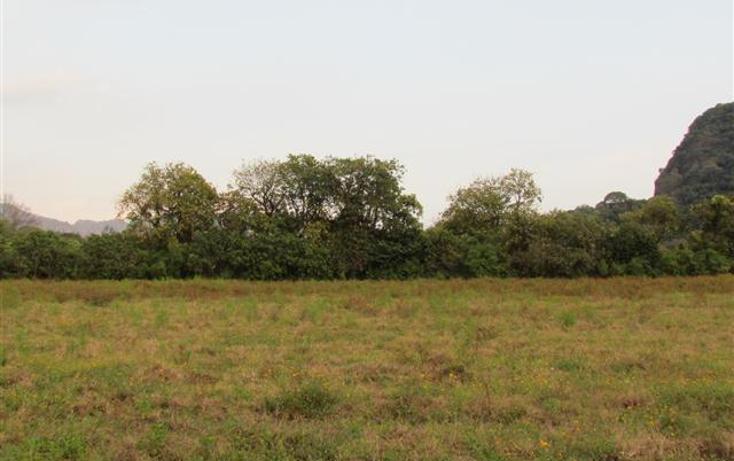Foto de terreno habitacional en venta en  , tepoztlán centro, tepoztlán, morelos, 1192053 No. 23