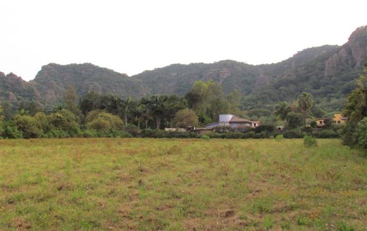 Foto de terreno habitacional en venta en  , tepoztlán centro, tepoztlán, morelos, 1192053 No. 25