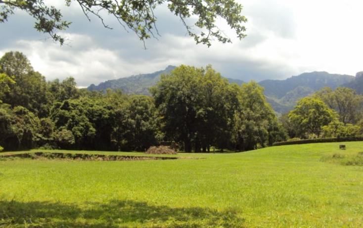 Foto de terreno habitacional en venta en, tepoztlán centro, tepoztlán, morelos, 1298139 no 03