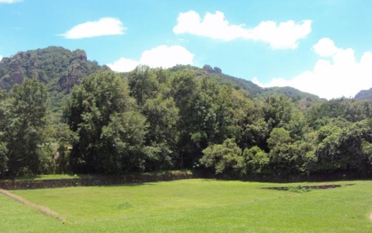 Foto de terreno habitacional en venta en, tepoztlán centro, tepoztlán, morelos, 1298139 no 05