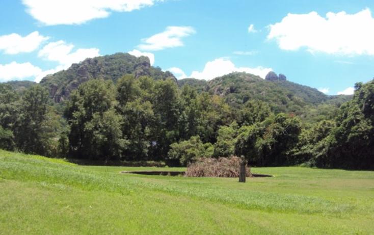 Foto de terreno habitacional en venta en  , tepoztlán centro, tepoztlán, morelos, 1298139 No. 06