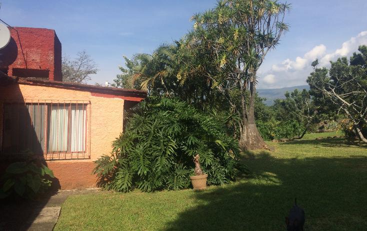 Foto de terreno habitacional en venta en  , tepoztlán centro, tepoztlán, morelos, 1488063 No. 04