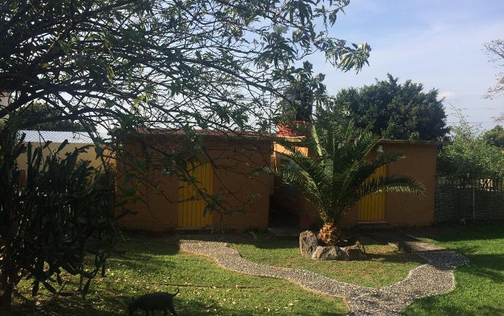 Foto de terreno habitacional en venta en  , tepoztlán centro, tepoztlán, morelos, 1488063 No. 17