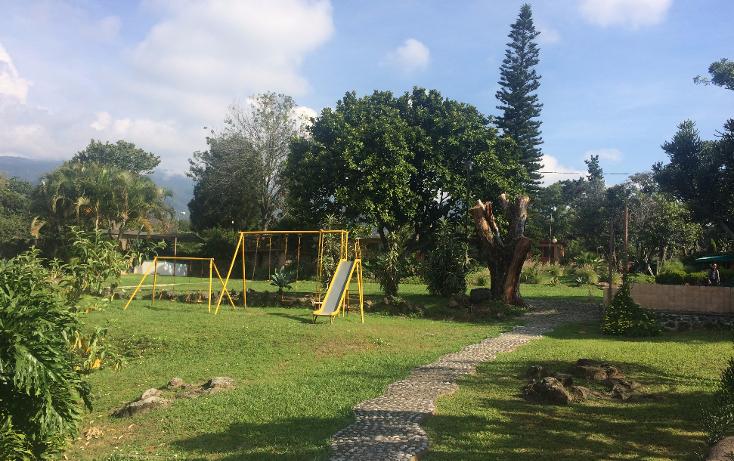 Foto de terreno habitacional en venta en  , tepoztlán centro, tepoztlán, morelos, 1488063 No. 18