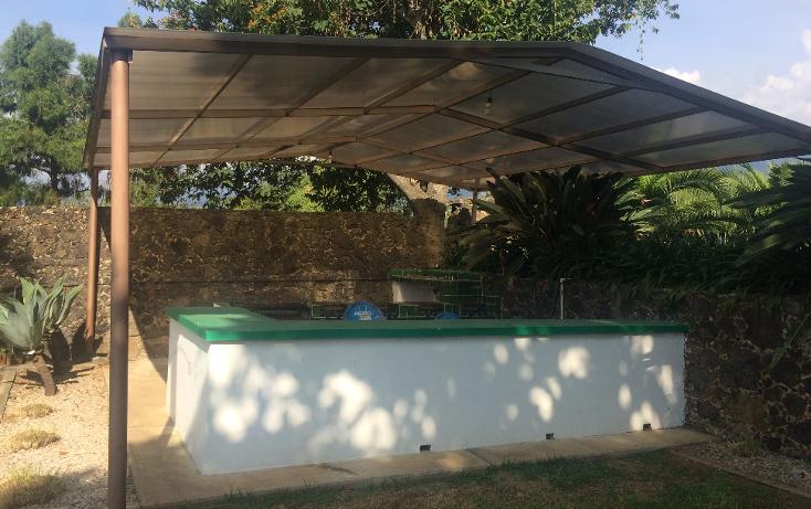 Foto de terreno habitacional en venta en  , tepoztlán centro, tepoztlán, morelos, 1488063 No. 24