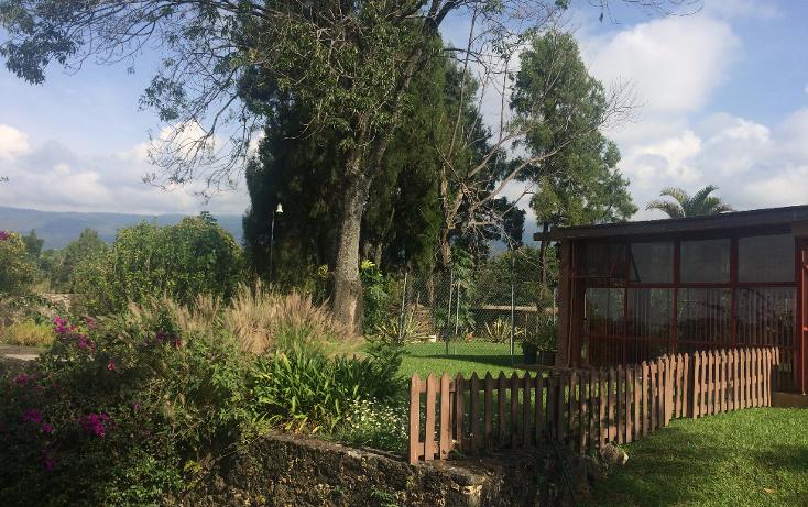 Foto de terreno habitacional en venta en  , tepoztlán centro, tepoztlán, morelos, 1488063 No. 29