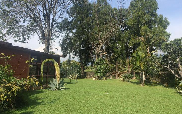 Foto de terreno habitacional en venta en  , tepoztlán centro, tepoztlán, morelos, 1488063 No. 51