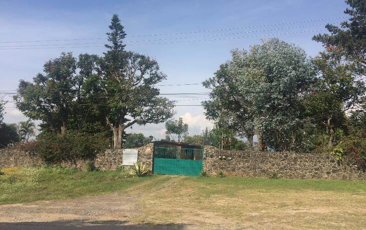 Foto de terreno habitacional en venta en  , tepoztlán centro, tepoztlán, morelos, 1488063 No. 55