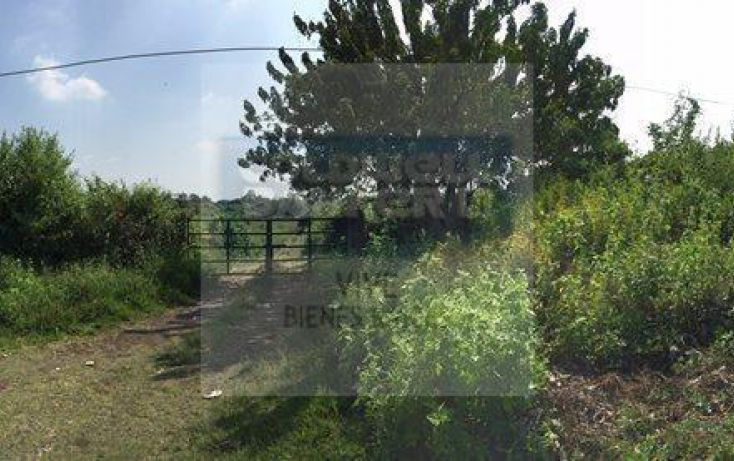 Foto de terreno habitacional en venta en, tepoztlán centro, tepoztlán, morelos, 1843646 no 05