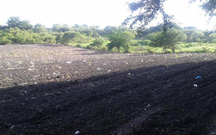 Foto de terreno habitacional en venta en domicilio conocido , tequesquitengo, jojutla, morelos, 1016363 No. 02