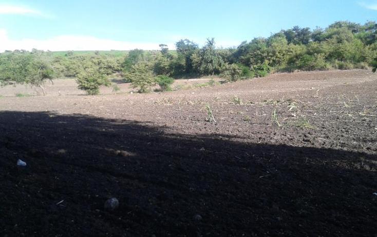 Foto de terreno habitacional en venta en domicilio conocido , tequesquitengo, jojutla, morelos, 1016363 No. 04