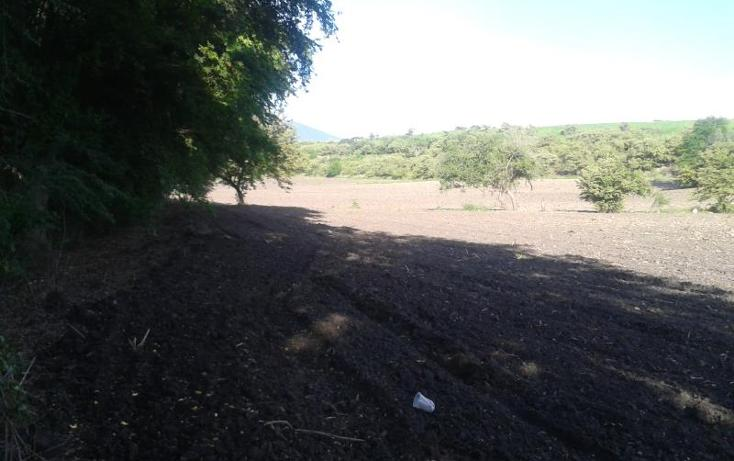 Foto de terreno habitacional en venta en domicilio conocido , tequesquitengo, jojutla, morelos, 1016363 No. 06