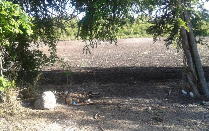 Foto de terreno habitacional en venta en domicilio conocido , tequesquitengo, jojutla, morelos, 1016363 No. 09