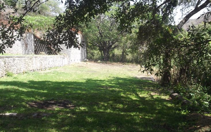 Foto de terreno habitacional en renta en  , tequesquitengo, jojutla, morelos, 1115725 No. 05
