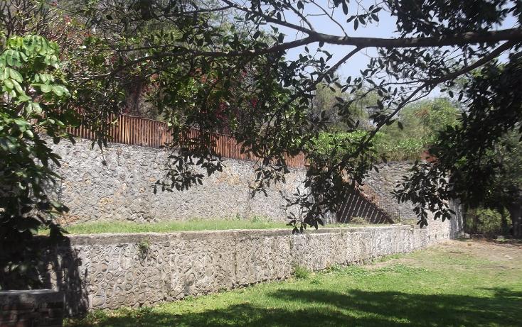 Foto de terreno habitacional en renta en  , tequesquitengo, jojutla, morelos, 1115725 No. 06