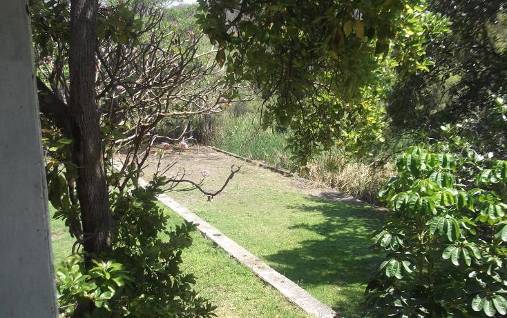 Foto de terreno habitacional en renta en  , tequesquitengo, jojutla, morelos, 1115725 No. 14