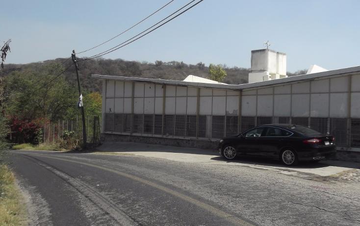 Foto de terreno habitacional en renta en  , tequesquitengo, jojutla, morelos, 1115725 No. 18