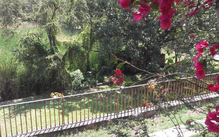 Foto de terreno habitacional en renta en  , tequesquitengo, jojutla, morelos, 1115725 No. 21