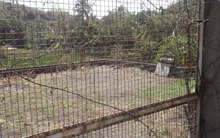 Foto de terreno habitacional en renta en  , tequesquitengo, jojutla, morelos, 1115725 No. 22