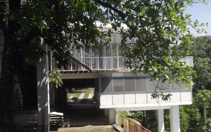 Foto de terreno habitacional en renta en  , tequesquitengo, jojutla, morelos, 1115725 No. 24