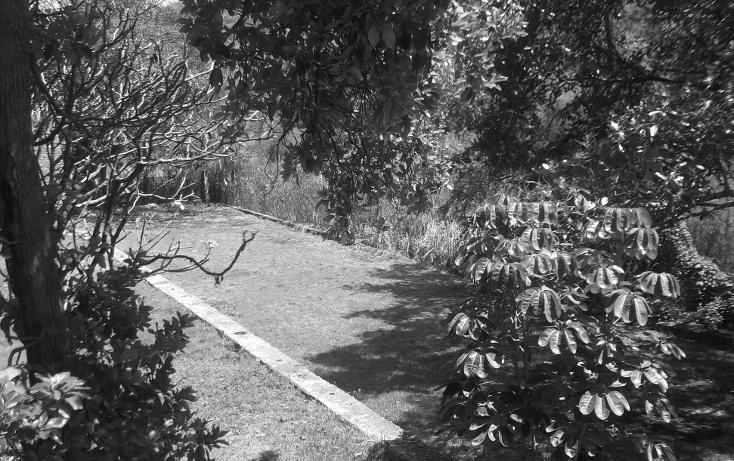 Foto de terreno habitacional en renta en  , tequesquitengo, jojutla, morelos, 1115725 No. 25